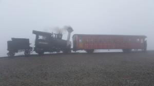 Cog Train