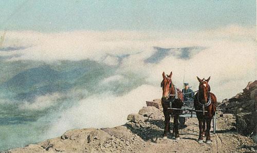 horses6mileWEB