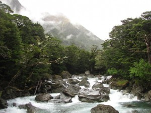 The Routeburn River.