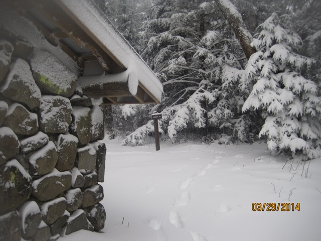 Winter Photo 1