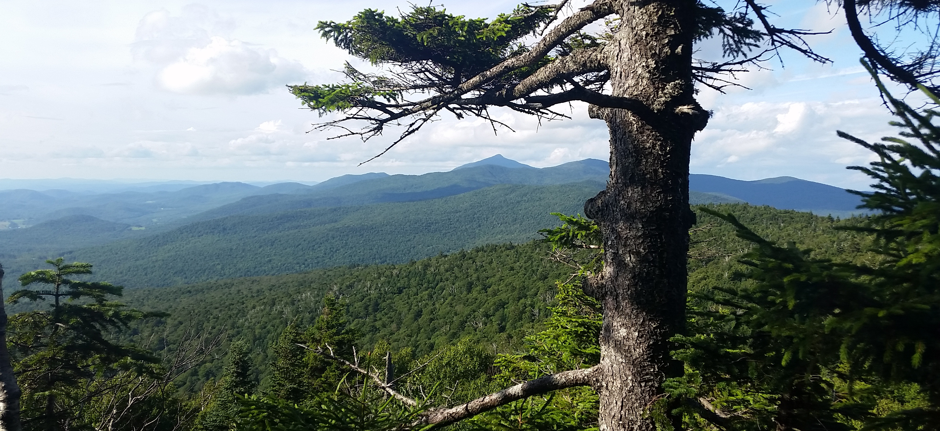 The Iconic Profile of Camel's Hump along Vermont's Long Trail