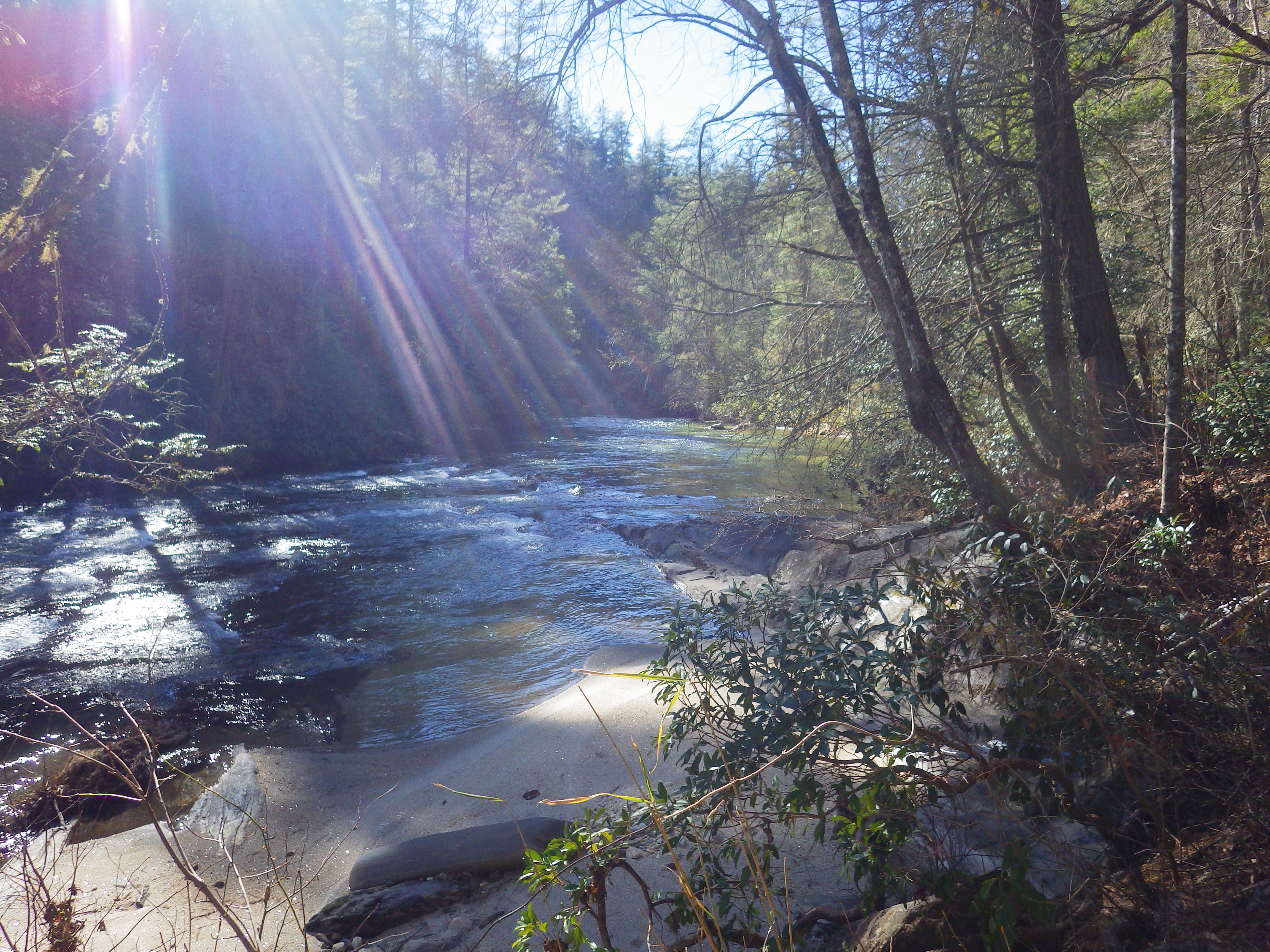 On the Banks of the Chattooga