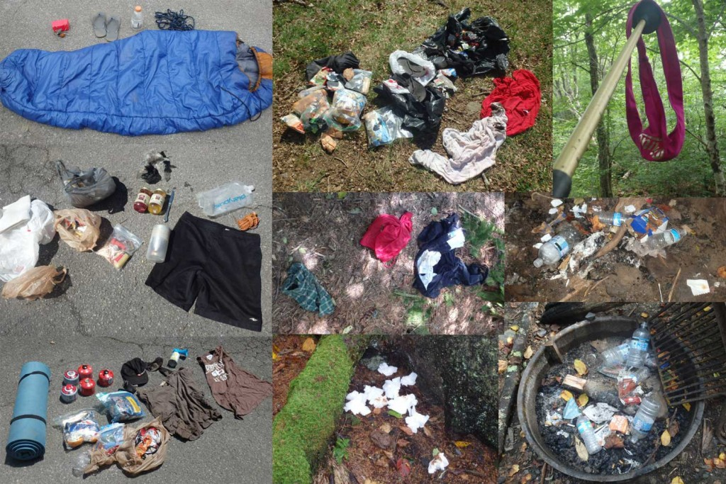A collection of various trash piles carried out by Twinkle Toes in 2015.