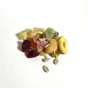 Dried Fruit Gorp