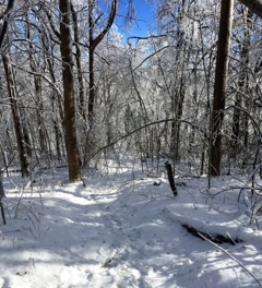 AT Approach Trail January 2016