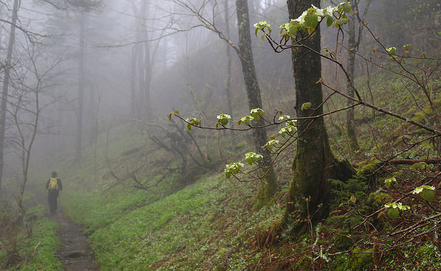 thru-hiker advice 1