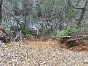 Cat Landslide