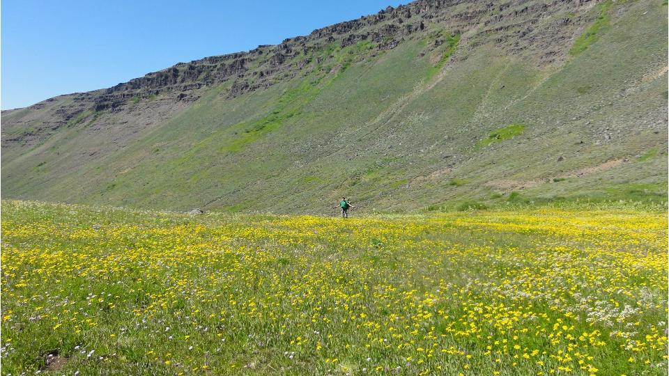 Hiking in the Steens Mountain photo by Brent Fenty