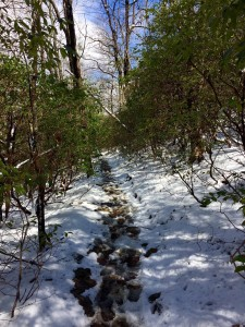 Snowy, muddy, wet trail on Blood Mountain
