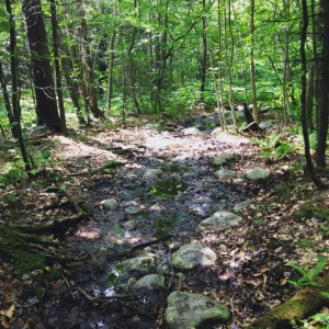 river:trail