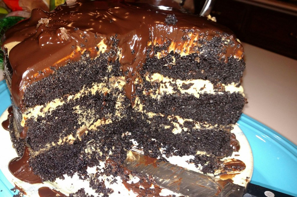Lisa's Reese's Cake!! A hiker's dream!! We put a good dent in it!