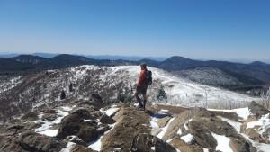 Looking over the Black Balsam Range