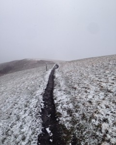 Well... Max Patch sure was beautiful even in a snowstorm.
