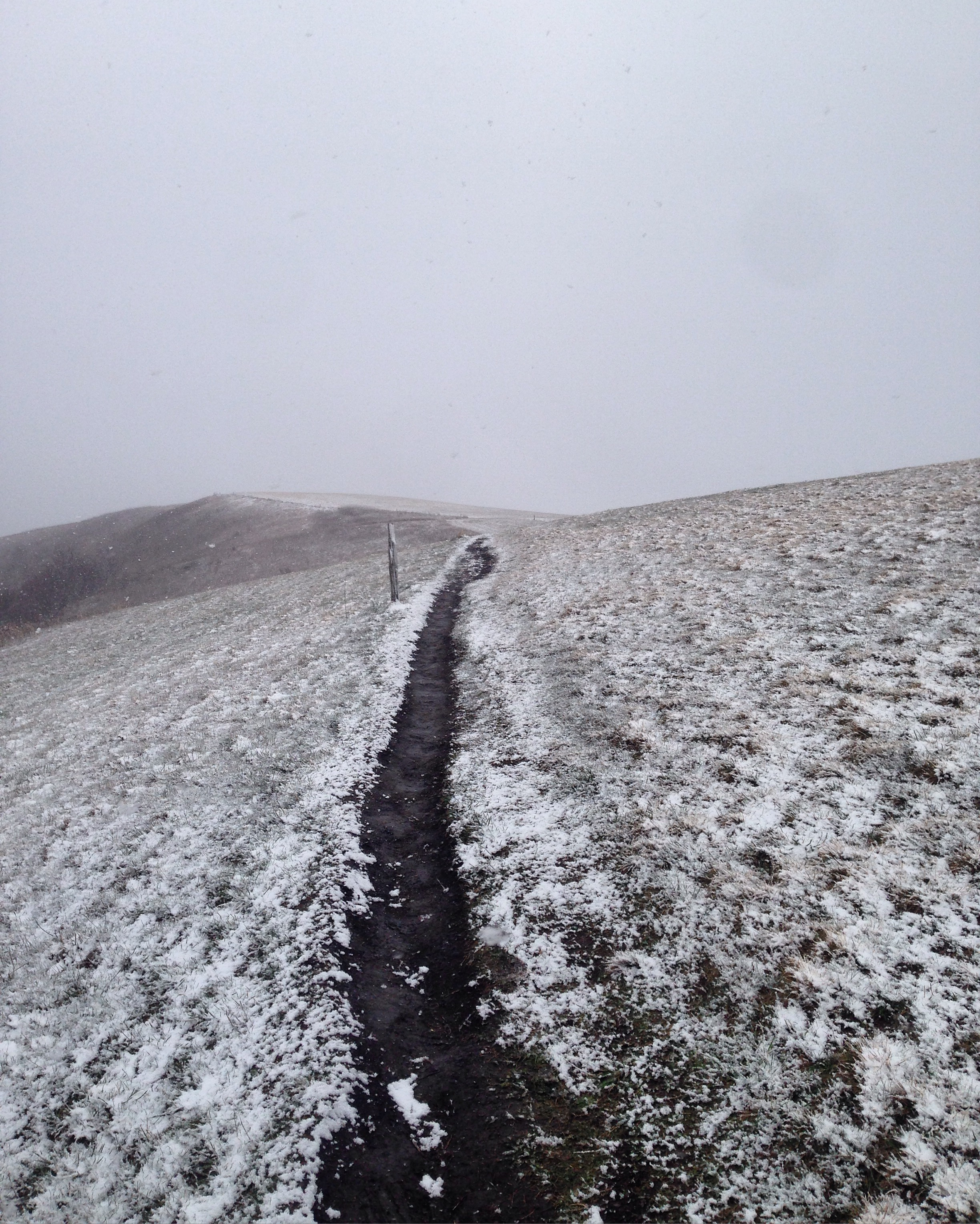 Spring snow on Max Patch.