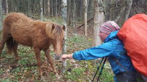 Hot Toddie getting a pony shower