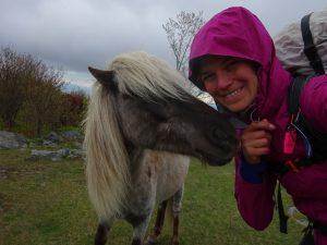 Wild ponies!!