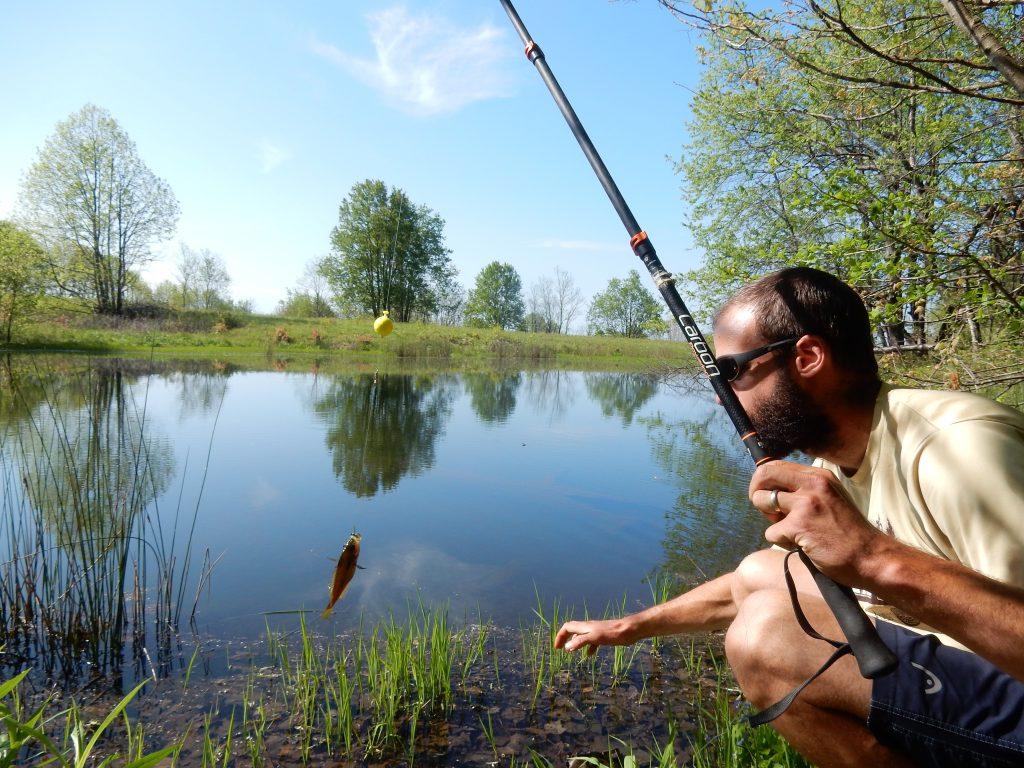 Lollygag Fishing