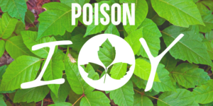 Poison-Ivy-Cover-Photo