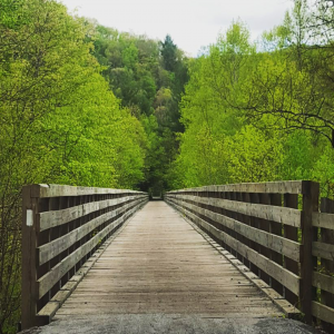 A bridge on The Virginia Creeper Trail