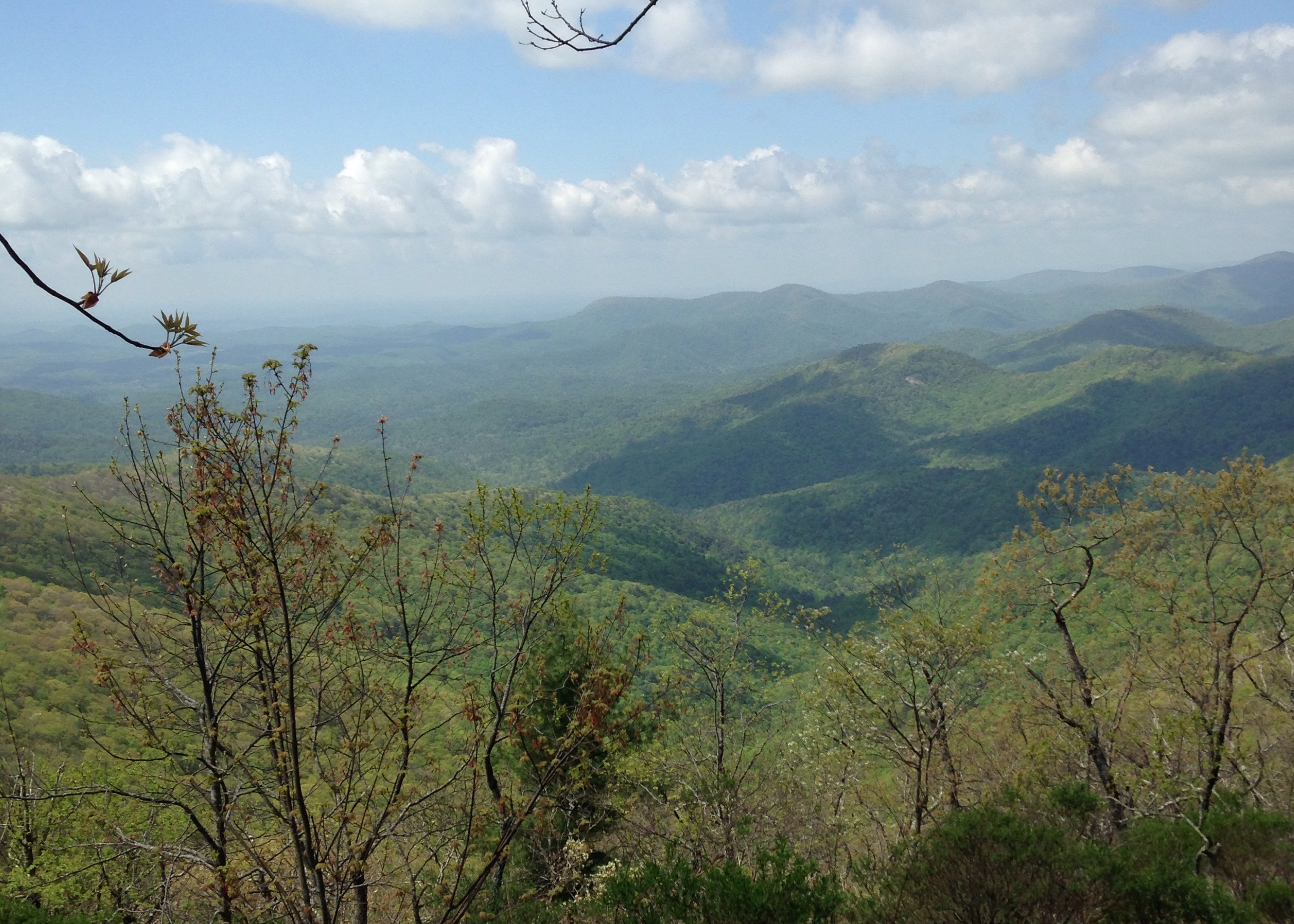 The view from the top of Wildcat Mountain.