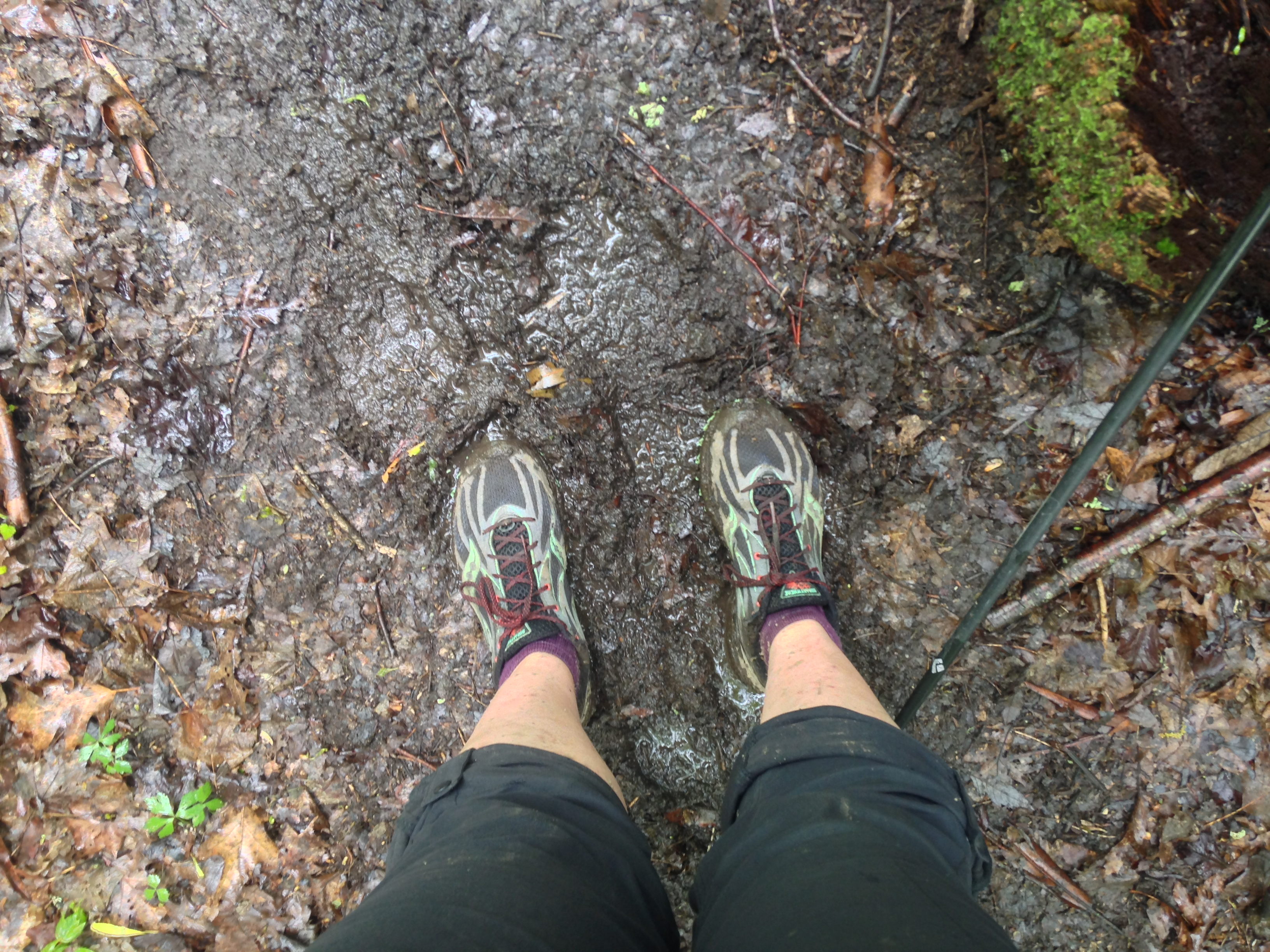 This was early on. Later my shoes were just mud balls.