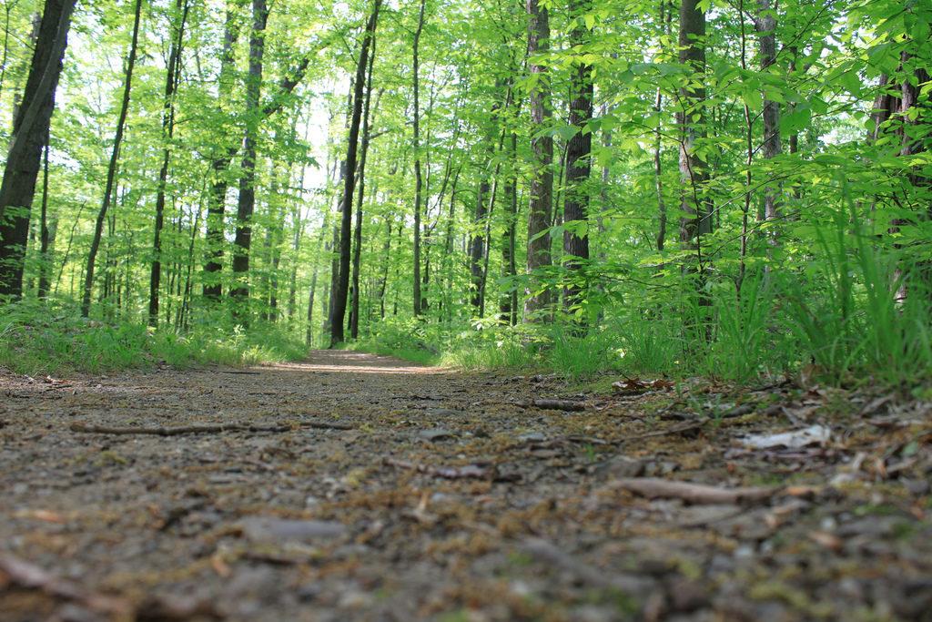 buckeye trail Cuyahoga Valley