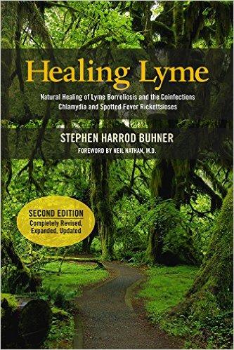 healing lyme book