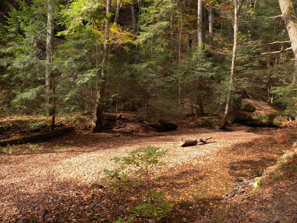hocking hills buckeye trail