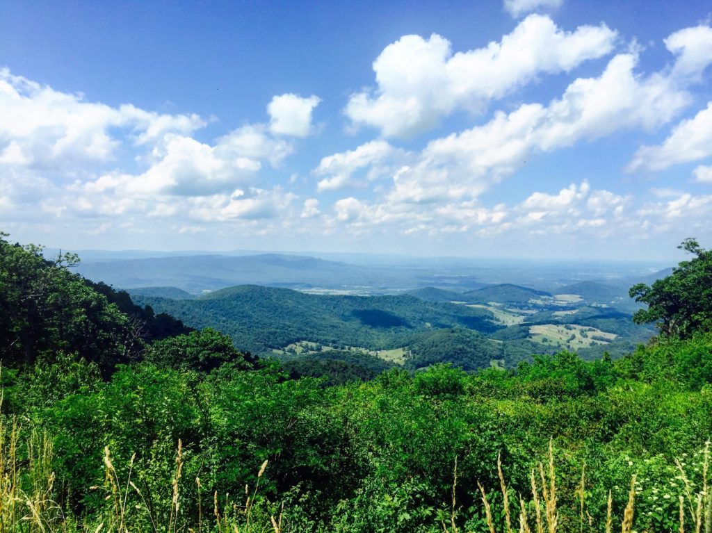 The view from Little Hogback Gap, the photo that wrecked my ankle.