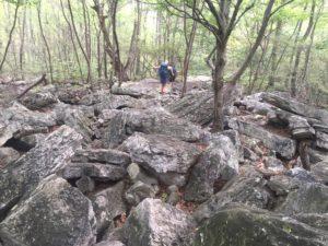 AT Hike (206)