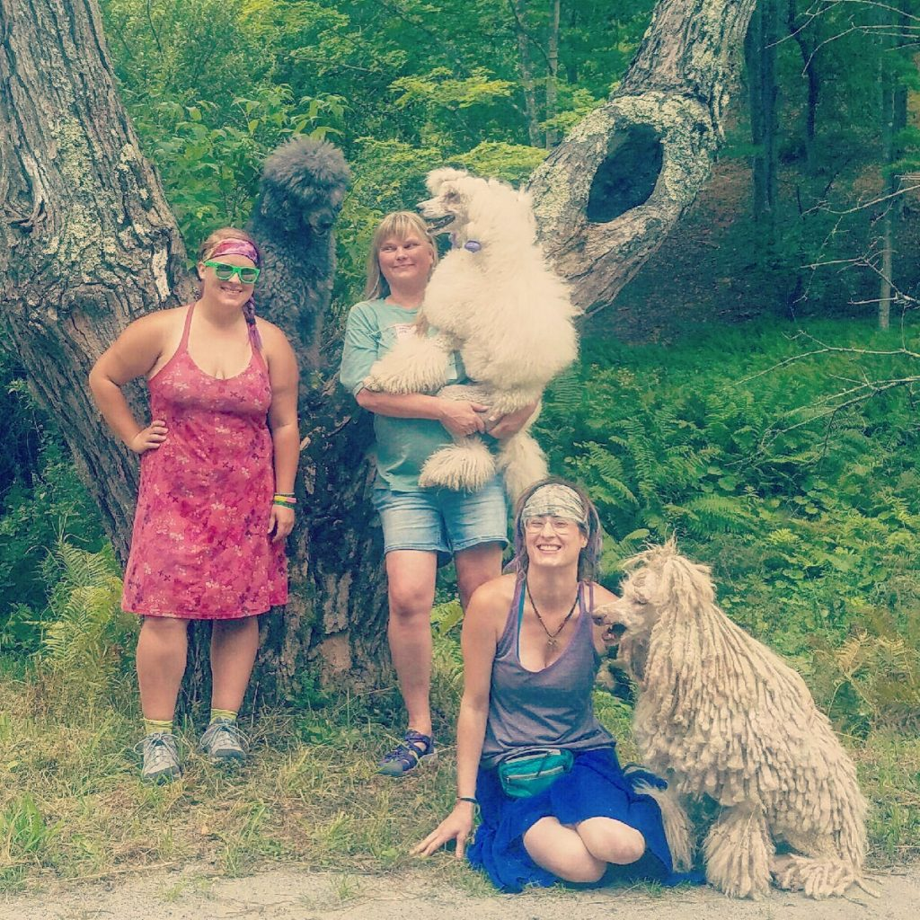 My friend Lisa brought her poodles Baldr, Skadi, and Foxxy to visit, and also brought fresh fruit and snacks for trail magic. Best day in a long time!