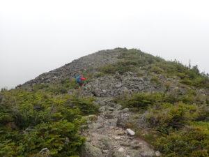 Rock scrambling up to the top