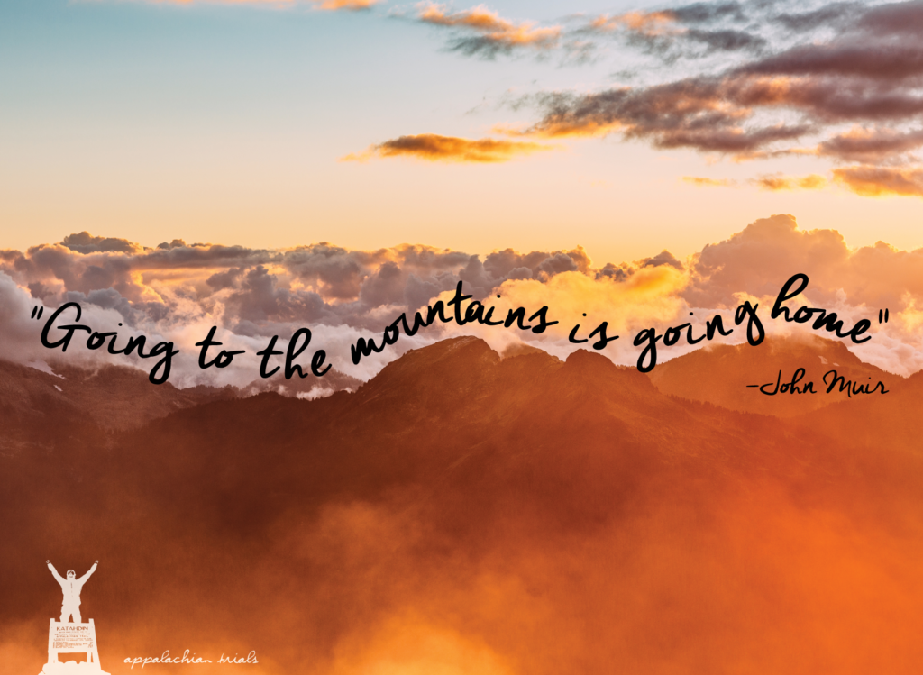 going-to-the-mountains-is-going-home-quote