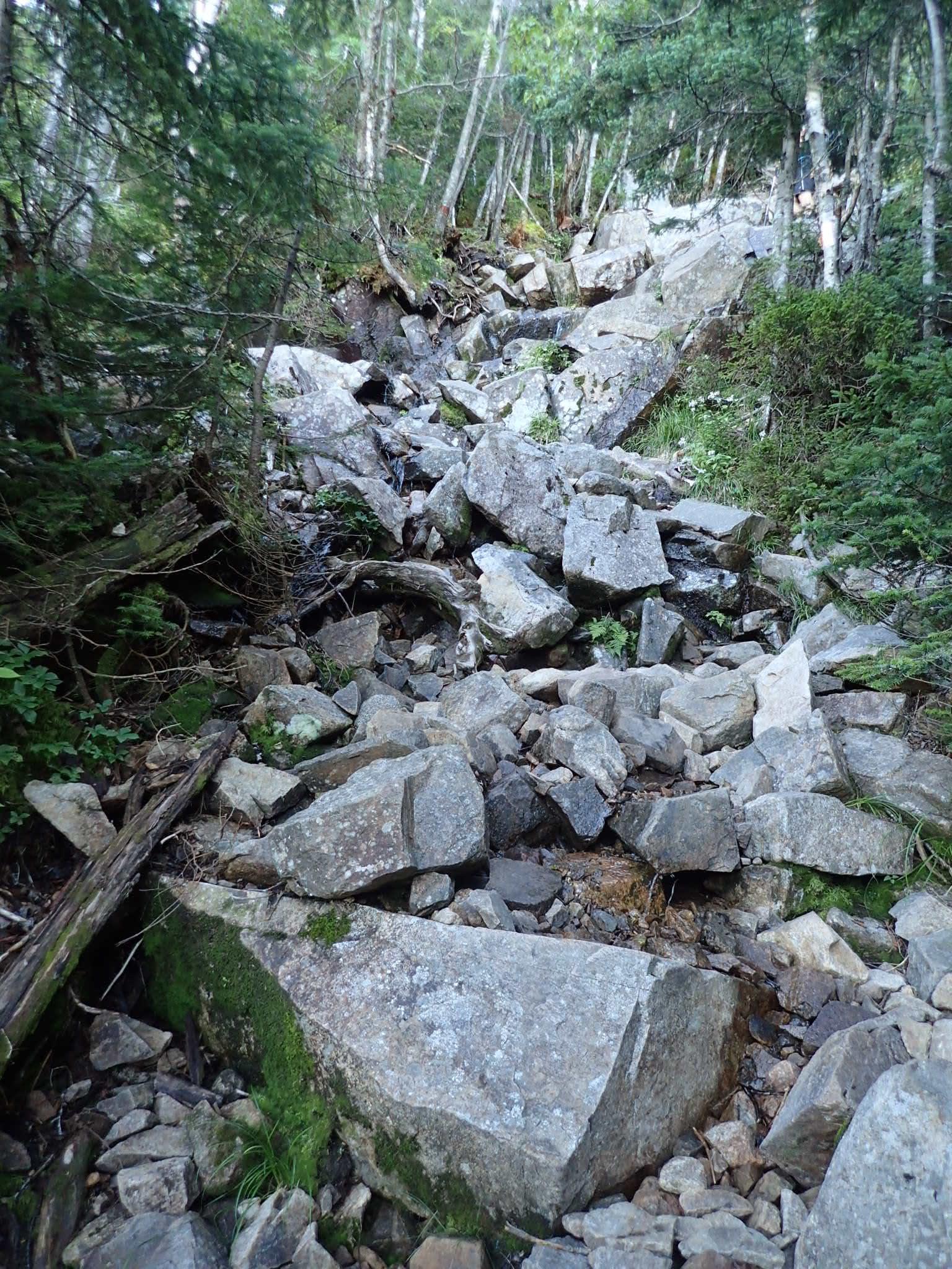 Yep, a trail