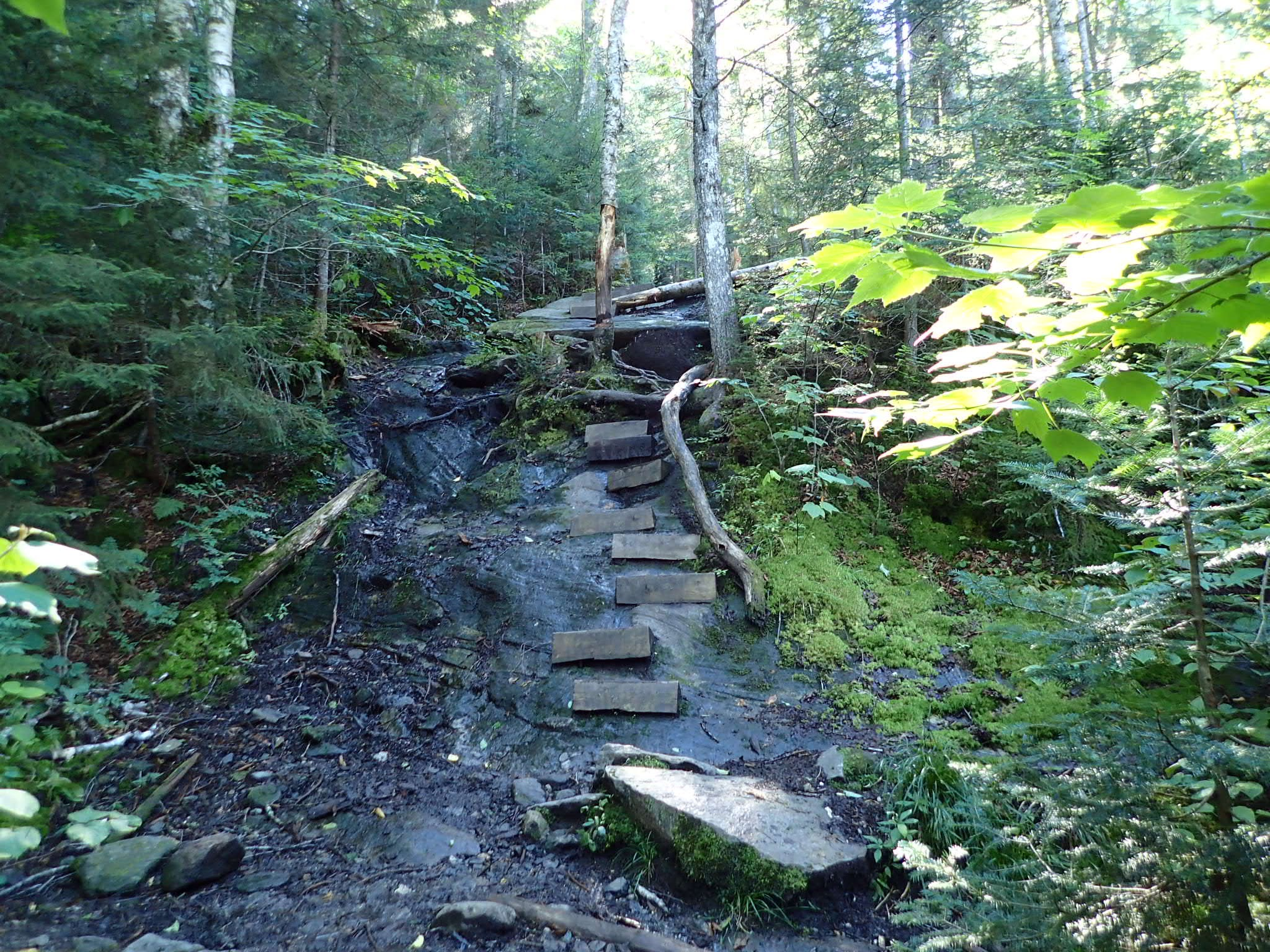 Beaver Brook Falls, the Southbound ascent to Moosilauke