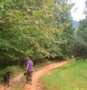 blue-and-i-hiking