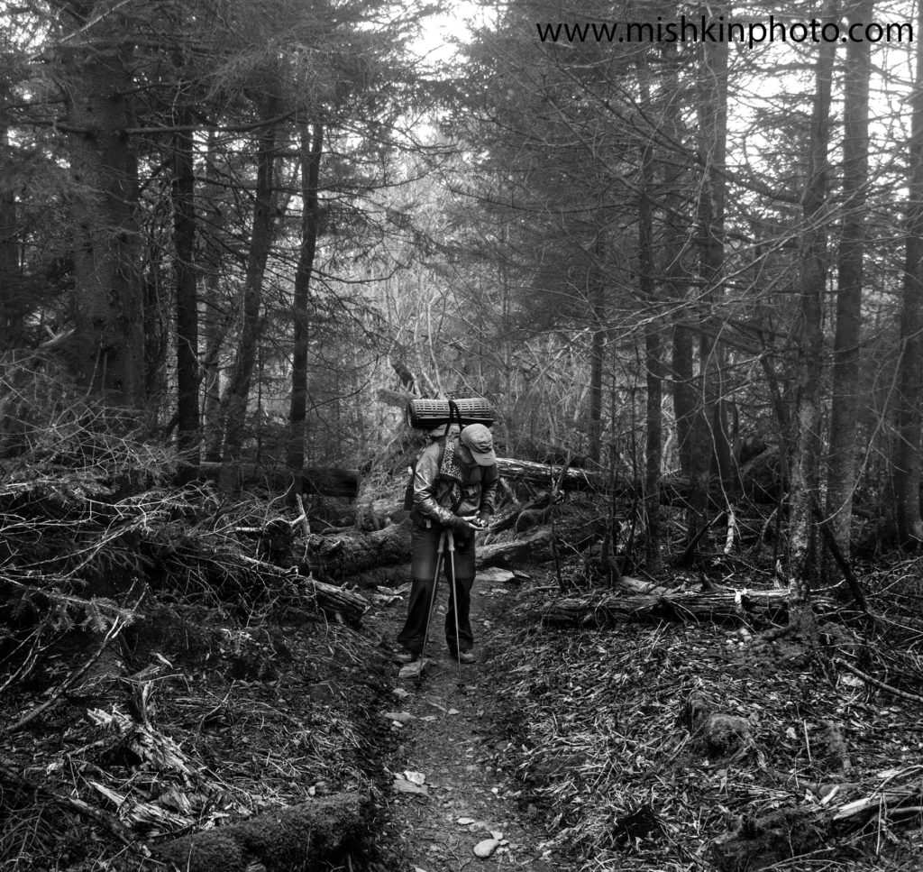Clingman's Dome - Mile 199.4