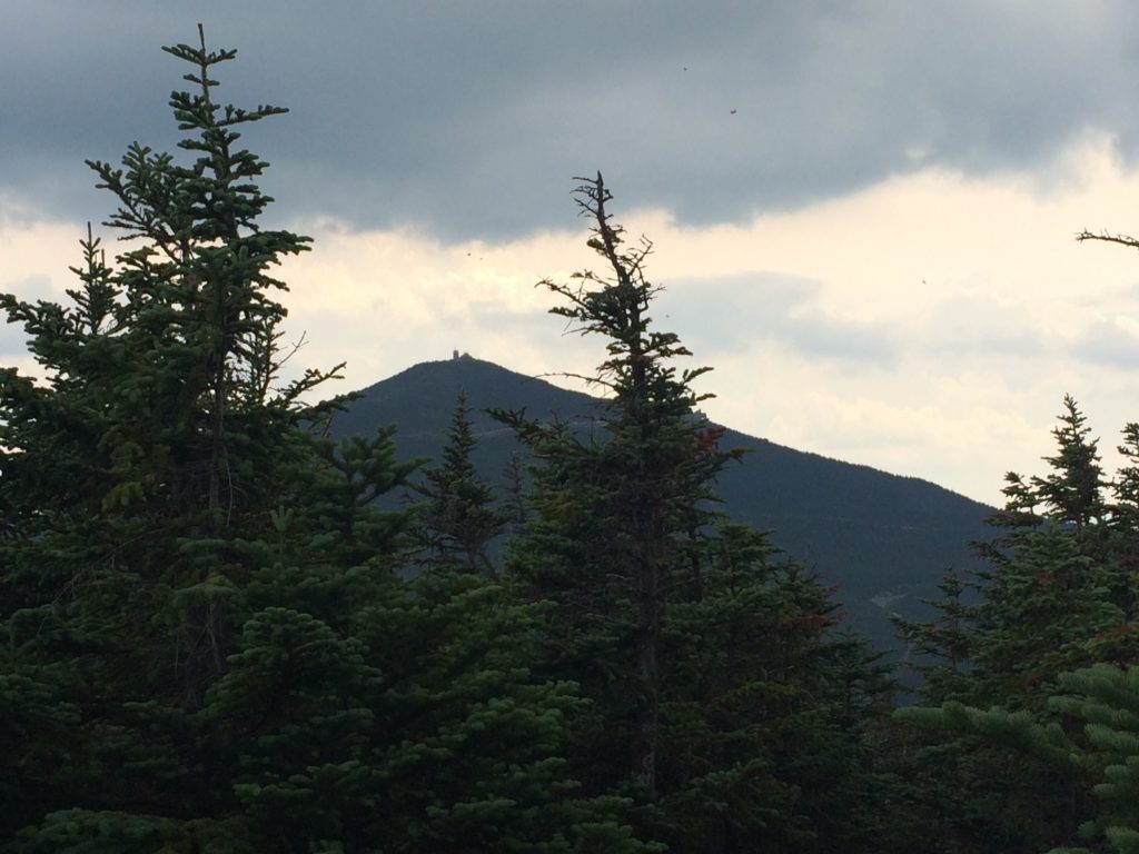 The view back to Whiteface's Observatory from Esther