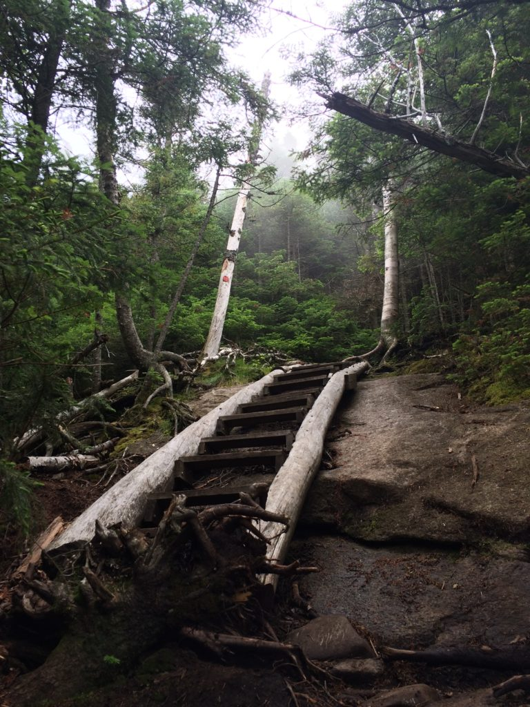 Today's hike, brought to you by: ladders, slabs, scrambles, and a heavy dose of anxiety