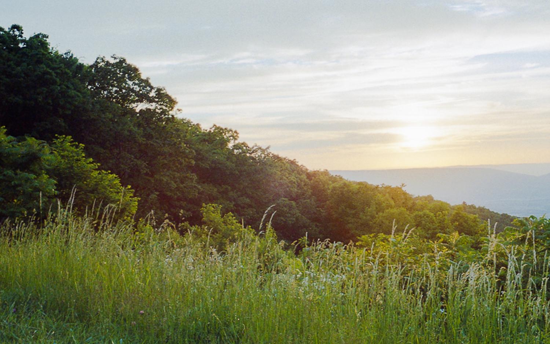 Shenandoah sunsets.