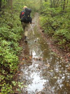 wet-trail4