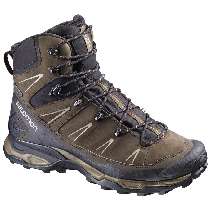 e4be5fd5a66 The Top Footwear on the Appalachian Trail: 2016 Thru-Hiker Survey ...