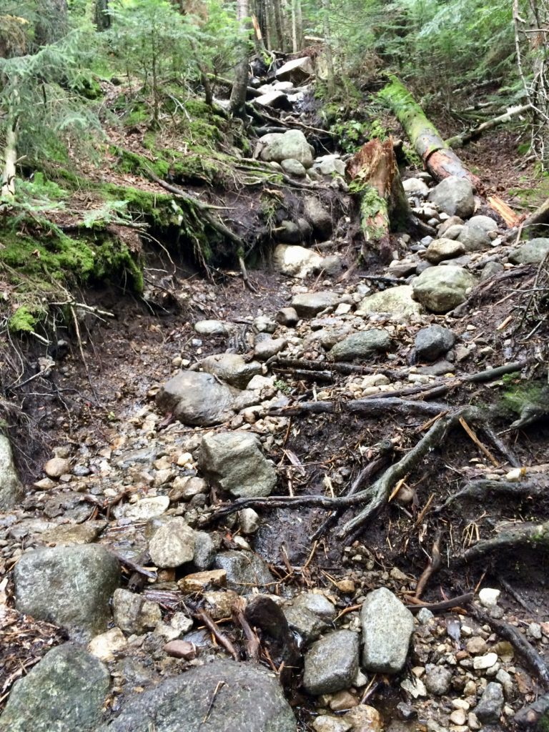 The state of the trail on trail-less peaks. Mud. Rocks. Repeat.