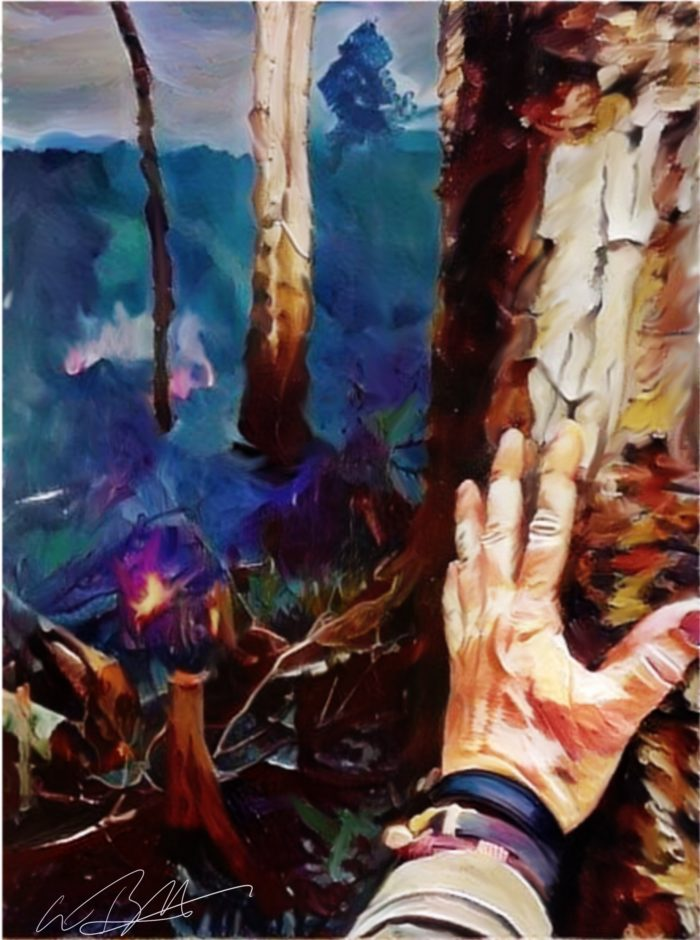 Gabe Burkhardt wildfire