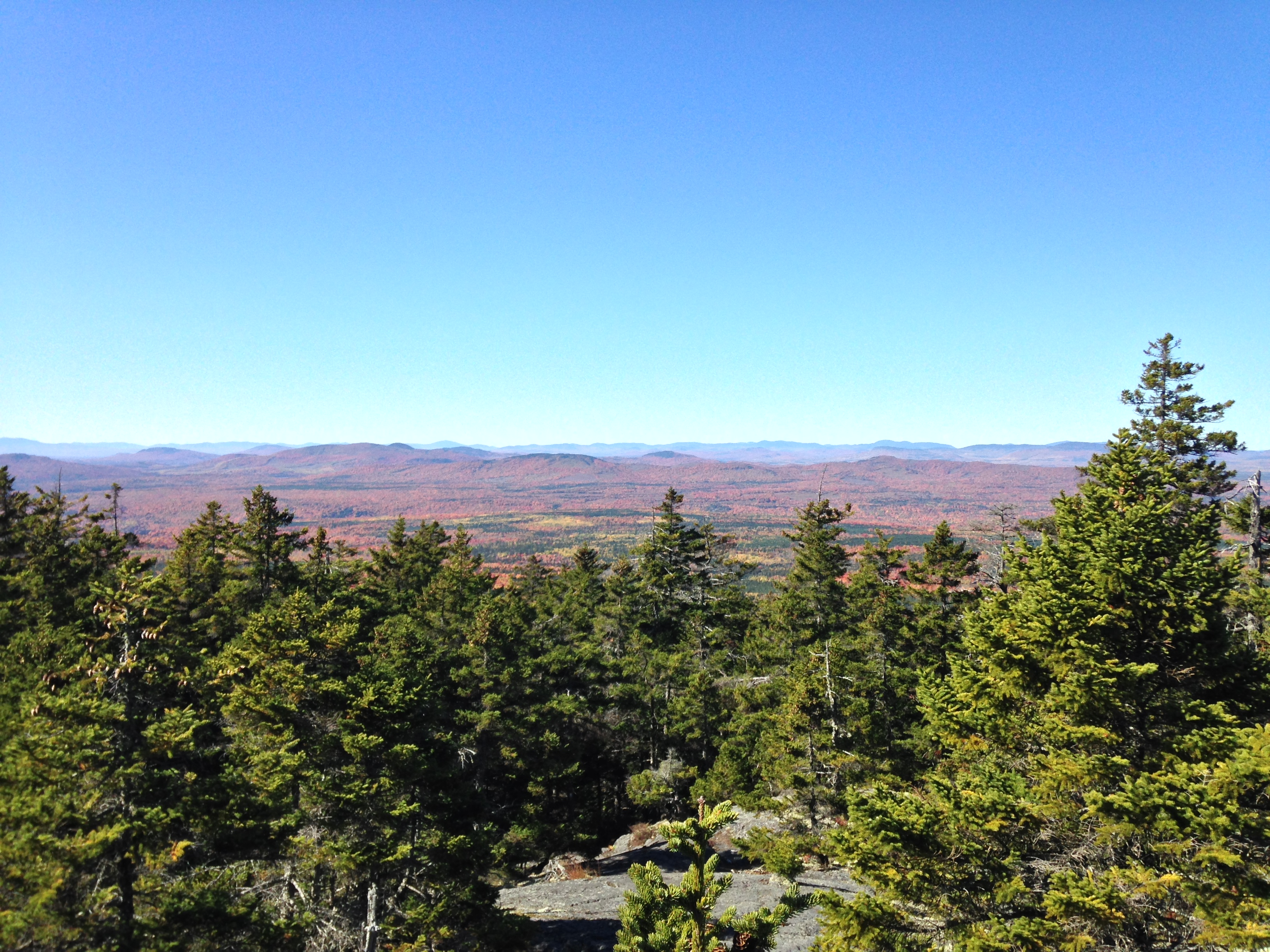 The summit of Pleasant Pond Mountain