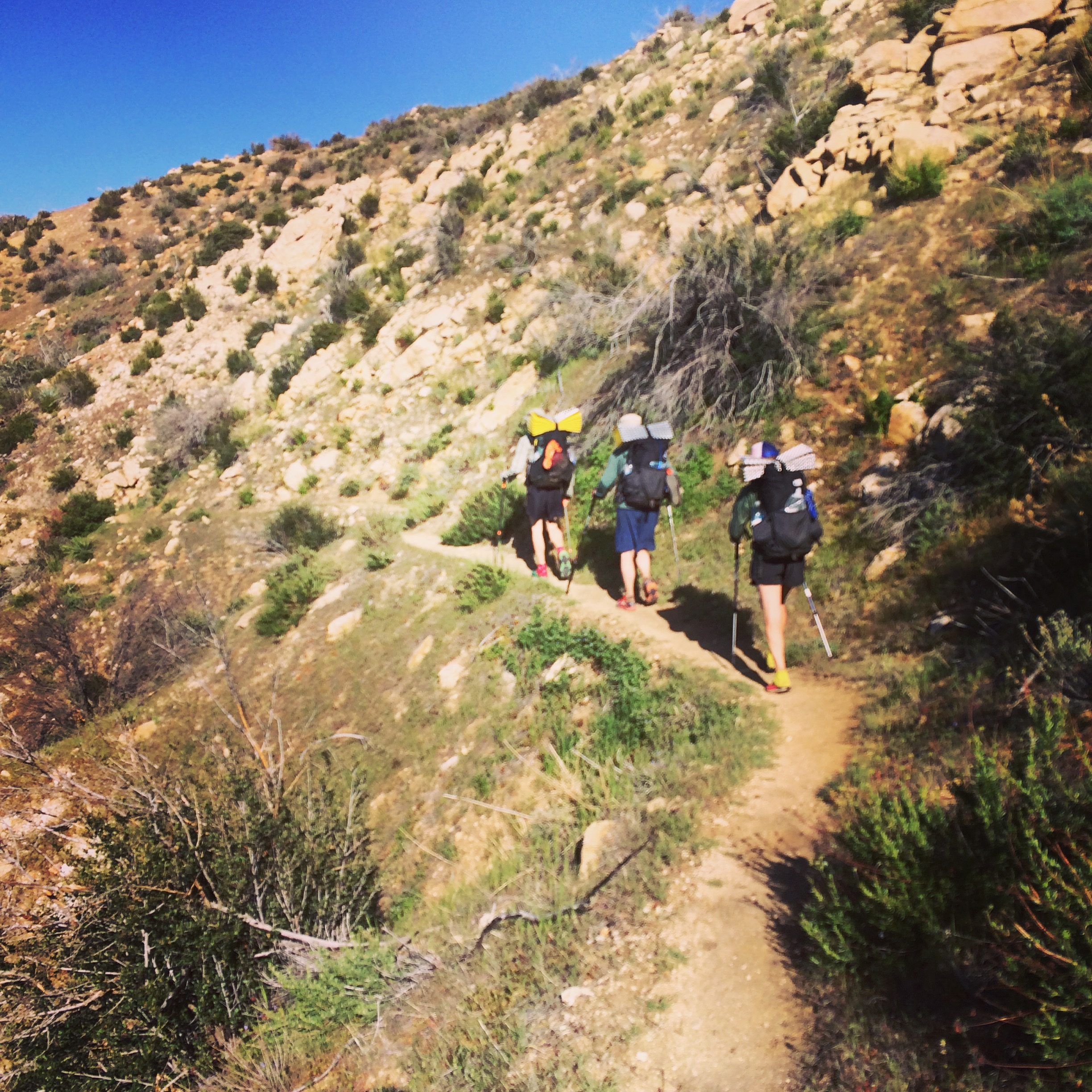 pacific crest trail resupply guide the trek