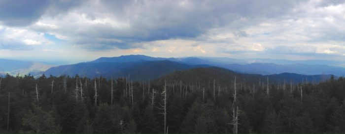 The highest point in the Smokies and on the AT