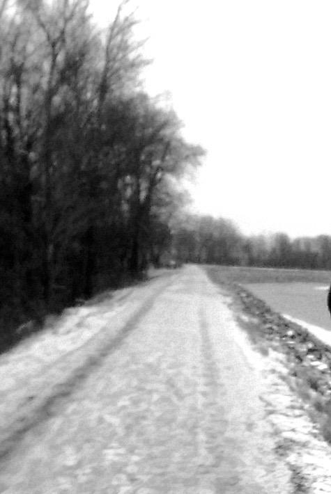 winter_beast-1