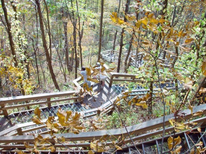amicalola_falls_stairs_9-11-2005_-_panoramio