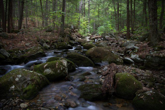 hiking-1840234_1920